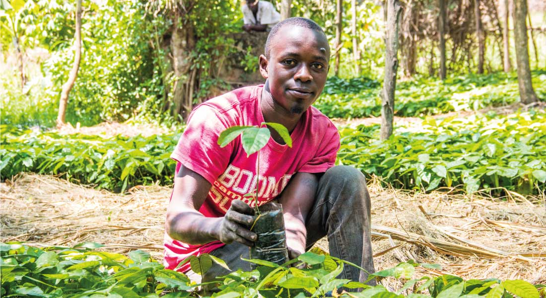 Empowering cocoa farmers
